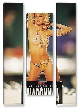 Модульная картина Madonna_01