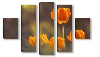 Модульная картина Оранжево-желтые тюльпаны