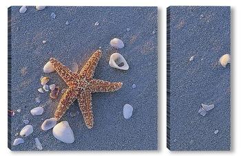 Модульная картина Starfish004