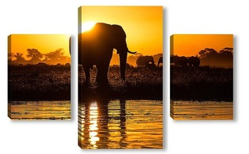 Модульная картина Золотой слон