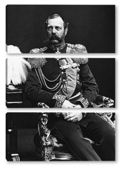 Модульная картина Александр II