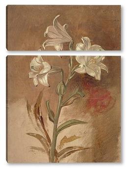 Модульная картина Белые лилии