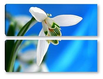 Модульная картина Подснежник – первый цветок весны