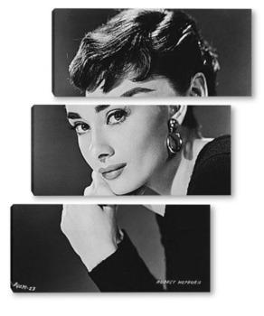 Модульная картина Audrey Hepburn-20