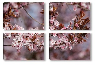 Модульная картина Сакура цветёт