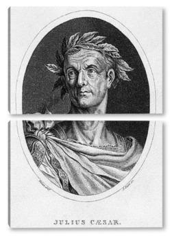 Модульная картина Юлий Цезарь