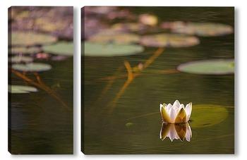 Модульная картина лилия и глубина