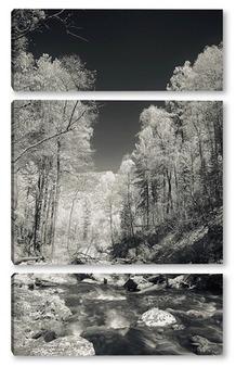 Модульная картина Горная река на Алтае 4