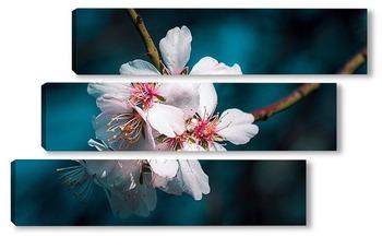 Модульная картина Цветущий миндаль
