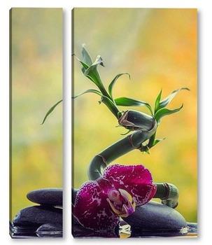 Модульная картина Бамбук и орхидея