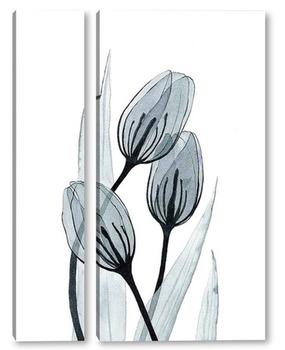 Модульная картина Прозрачные тюльпаны
