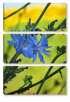 Модульная картина Цветок