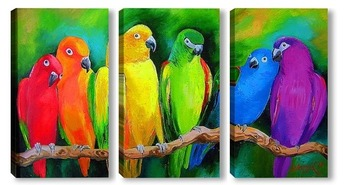 Модульная картина Попугаи Австралии