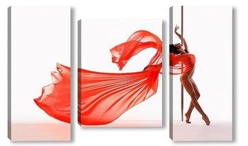 Модульная картина Pole dance
