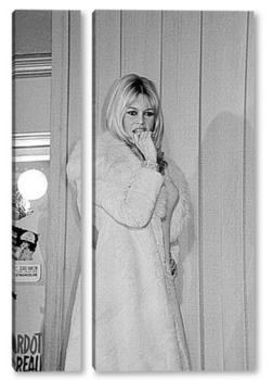 Модульная картина Brigitte Bardot-15