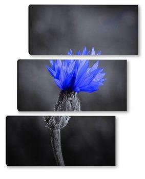 Модульная картина Синий цветочек