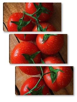 Модульная картина Свежие помидоры