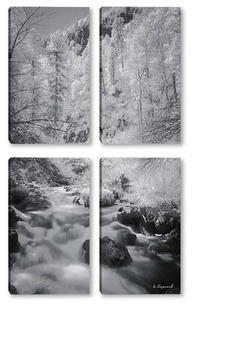 Модульная картина Горная река на Алтае