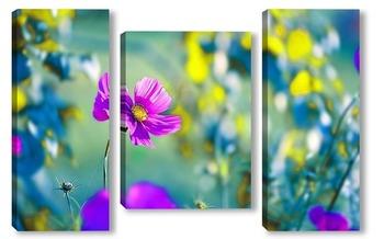 Модульная картина Садовые цветы