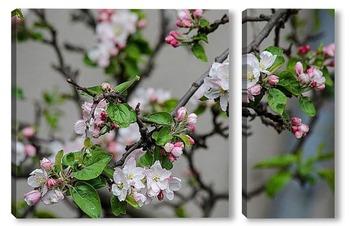 Модульная картина Когда яблони цветут