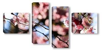 Модульная картина Праздник цветения сакуры
