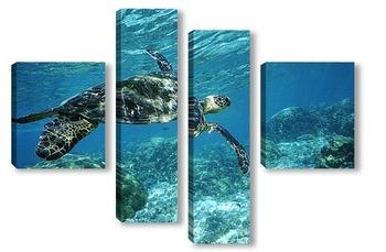 Модульная картина Turtle006