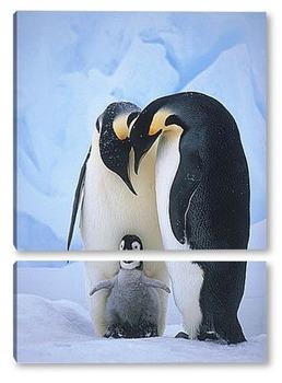 Модульная картина Императорские пингвины с малышом.