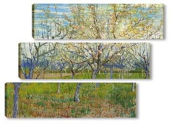 Модульная картина Сад с цветущими абрикосами