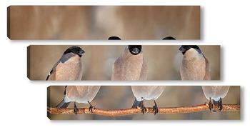 Модульная картина три подруги