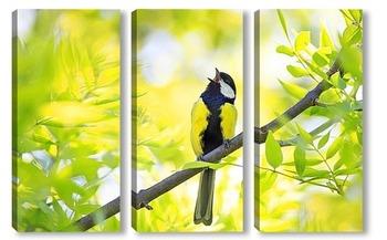 Модульная картина синица поет среди молодой зелени дерева в начале весны