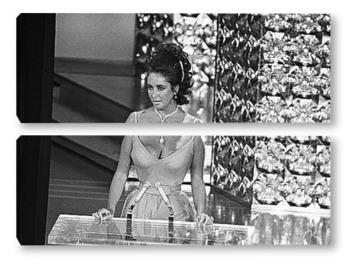 Модульная картина Elizabeth Taylor-26