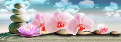 Наклейки Ветка орхидеи