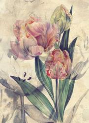 Наклейки Букет тюльпанов