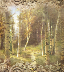 Наклейки Березы в лесу