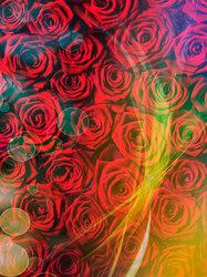 Наклейки Полотно из роз