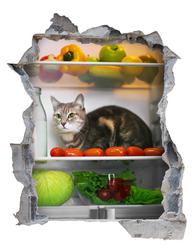 Наклейки Сюрприз в холодильнике