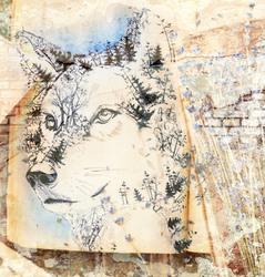 Наклейки Волк в зарисовке