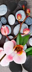 Наклейки Орхидея и камни