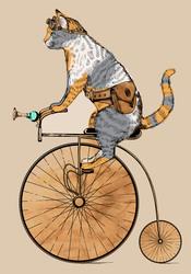 Наклейки Кот на велосипеде