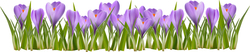 Наклейки Фиолетовая лужайка