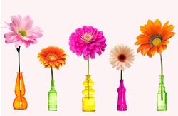 Наклейки Цветы в ярких бутылках