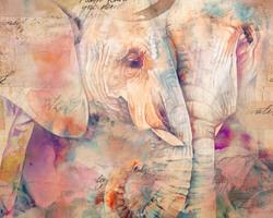Наклейки Пара слонов