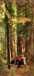 Наклейки Большие деревья и сова