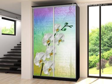Наклейка Белые орхидеи