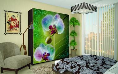 Наклейка Яркие орхидеи