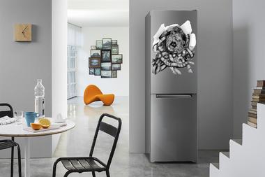 Наклейка Лев в холодильнике