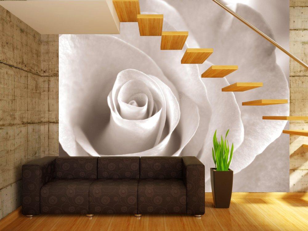 Дизайн белые розы