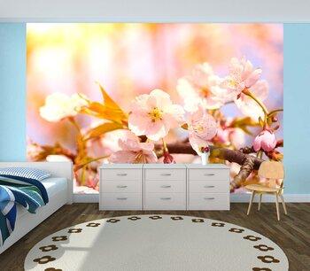 Фотообои на стену Таинственные вишневые деревья