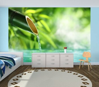 Фотообои на стену Бамбуковый лес