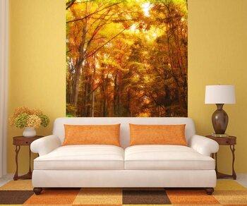 Фотообои на стену Осенний парк